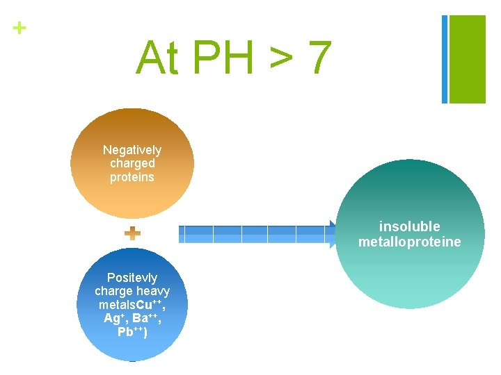 + At PH > 7 Negatively charged proteins insoluble metalloproteine Positevly charge heavy metals.