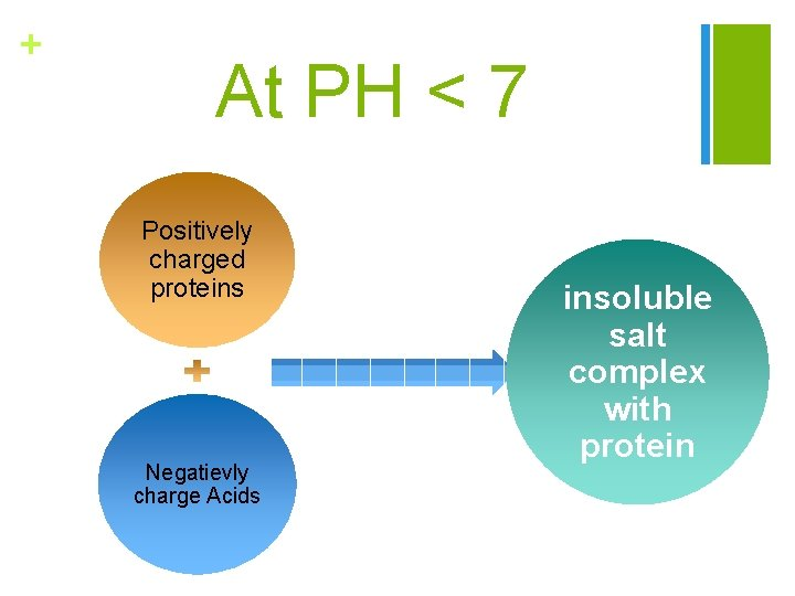 + At PH < 7 Positively charged proteins Negatievly charge Acids insoluble salt complex