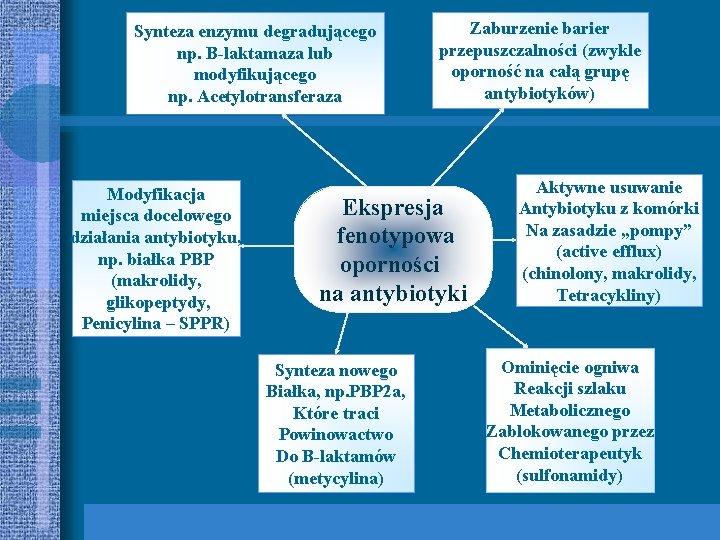 Synteza enzymu degradującego np. B-laktamaza lub modyfikującego np. Acetylotransferaza Modyfikacja miejsca docelowego działania antybiotyku,
