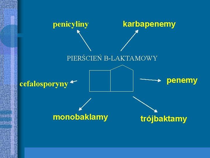 penicyliny karbapenemy PIERŚCIEŃ B-LAKTAMOWY cefalosporyny monobaklamy penemy trójbaktamy