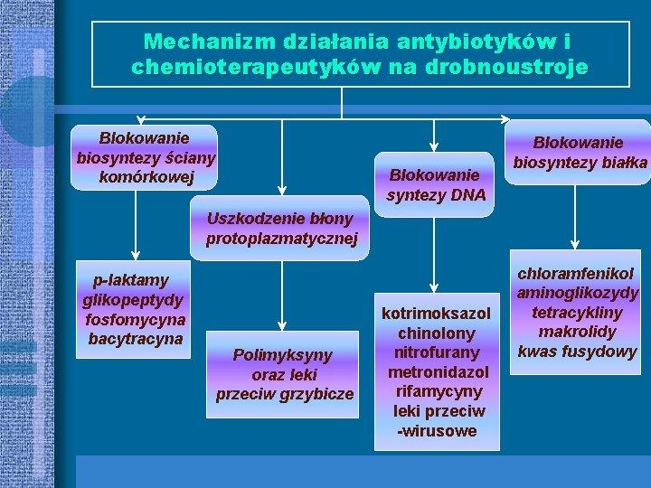 Mechanizm działania antybiotyków i chemioterapeutyków na drobnoustroje Blokowanie biosyntezy ściany komórkowej Blokowanie syntezy DNA