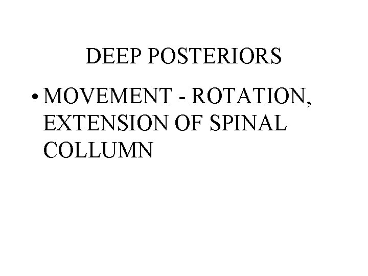 DEEP POSTERIORS • MOVEMENT - ROTATION, EXTENSION OF SPINAL COLLUMN