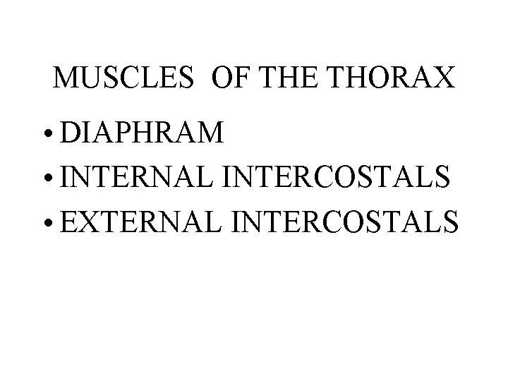 MUSCLES OF THE THORAX • DIAPHRAM • INTERNAL INTERCOSTALS • EXTERNAL INTERCOSTALS