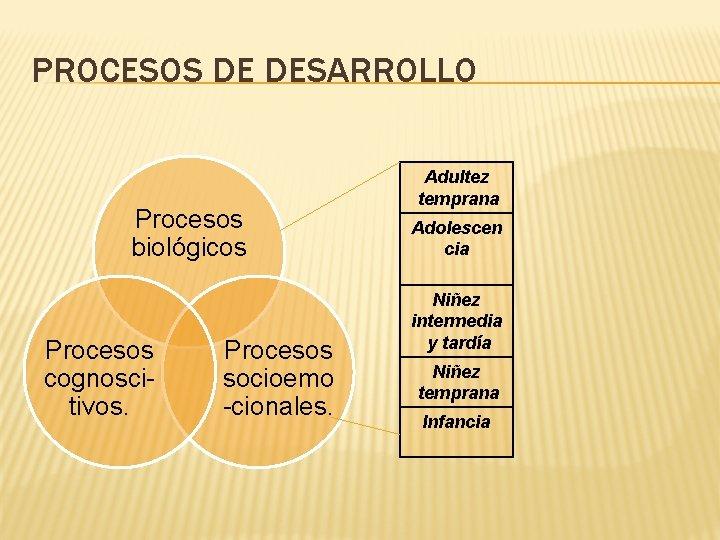 PROCESOS DE DESARROLLO Procesos biológicos Procesos cognoscitivos. Procesos socioemo -cionales. Adultez temprana Adolescen cia