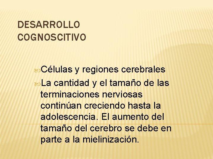 DESARROLLO COGNOSCITIVO Células y regiones cerebrales La cantidad y el tamaño de las terminaciones