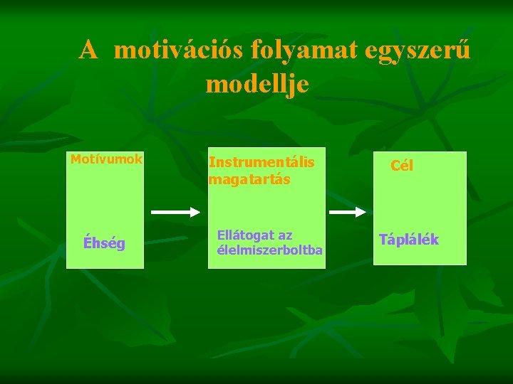 A motivációs folyamat egyszerű modellje Motívumok Éhség Instrumentális magatartás Ellátogat az élelmiszerboltba Cél Táplálék