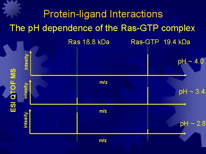 Protein-ligand Interactions The p. H dependence of the Ras-GTP complex intesity ESI QTOF MS