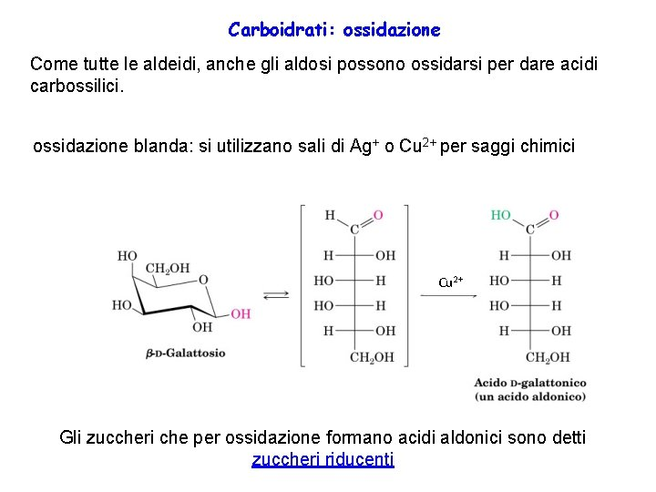 Carboidrati: ossidazione Come tutte le aldeidi, anche gli aldosi possono ossidarsi per dare acidi