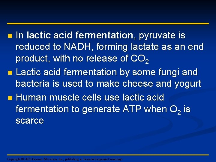 In lactic acid fermentation, pyruvate is reduced to NADH, forming lactate as an end