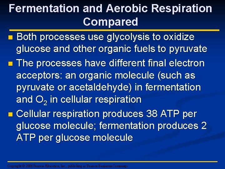Fermentation and Aerobic Respiration Compared Both processes use glycolysis to oxidize glucose and other