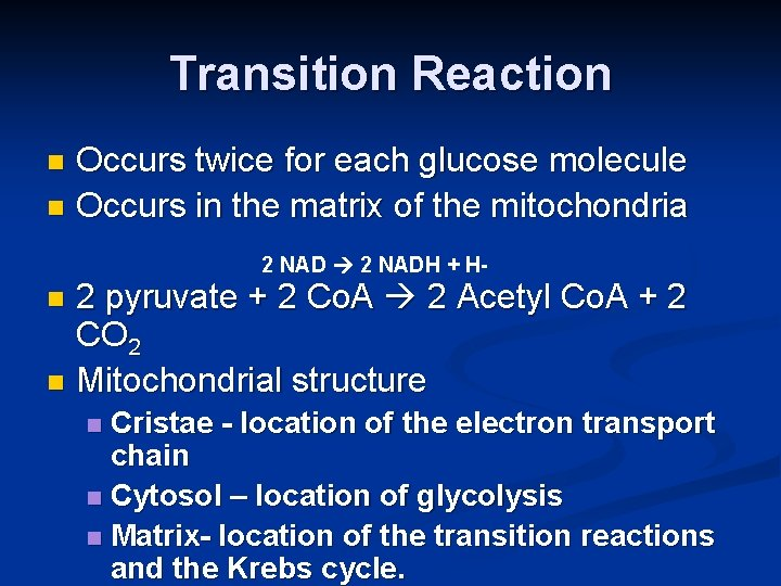 Transition Reaction Occurs twice for each glucose molecule n Occurs in the matrix of