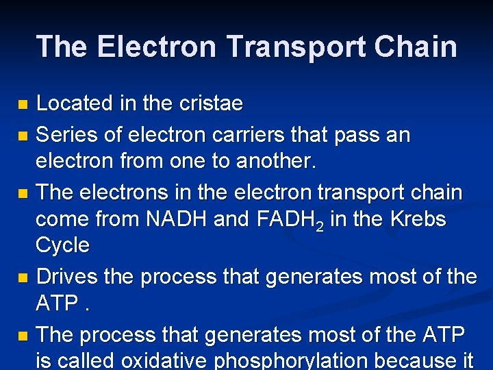 The Electron Transport Chain Located in the cristae n Series of electron carriers that