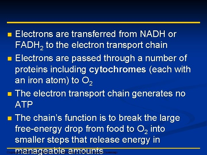 Electrons are transferred from NADH or FADH 2 to the electron transport chain n
