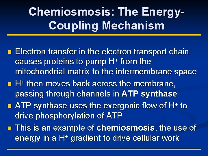 Chemiosmosis: The Energy. Coupling Mechanism n n Electron transfer in the electron transport chain