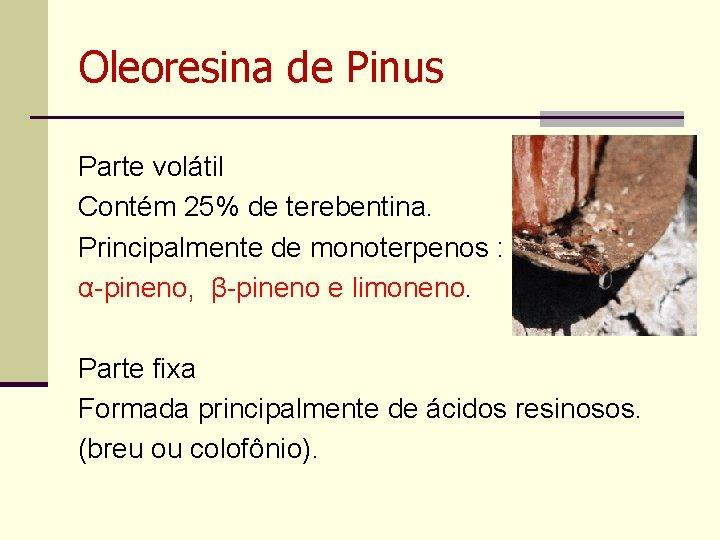 Oleoresina de Pinus Parte volátil Contém 25% de terebentina. Principalmente de monoterpenos : α-pineno,