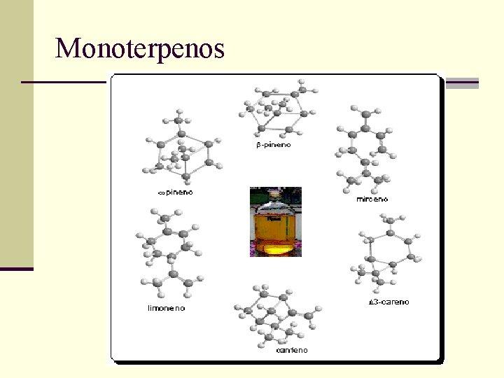Monoterpenos