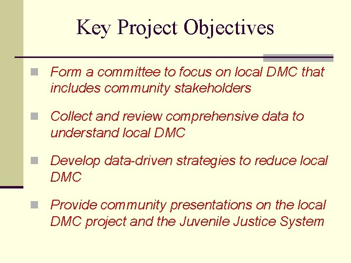 Key Project Objectives n Form a committee to focus on local DMC that includes