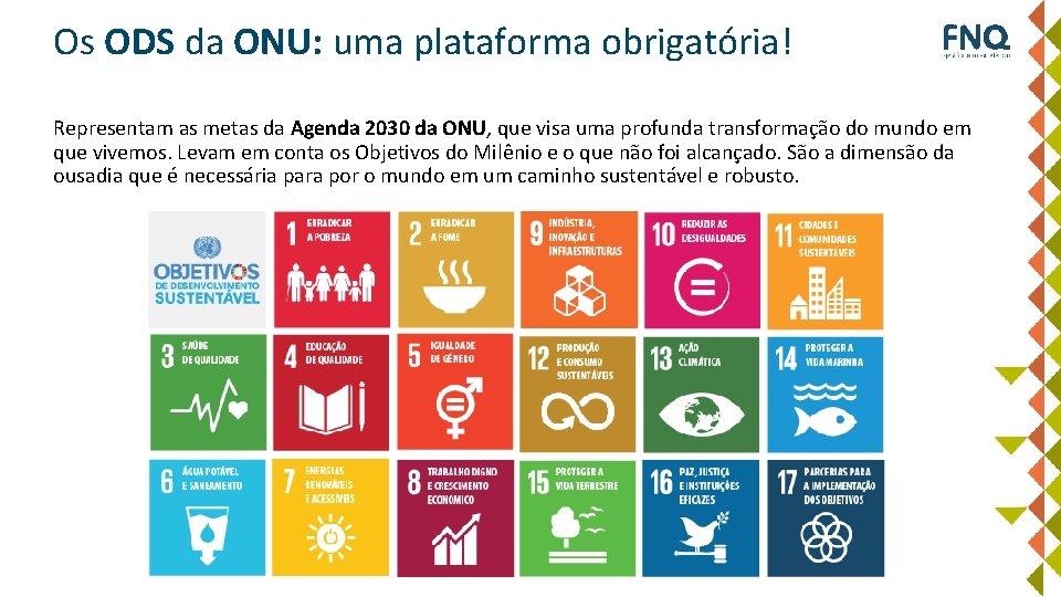 Os ODS da ONU: uma plataforma obrigatória! Representam as metas da Agenda 2030 da