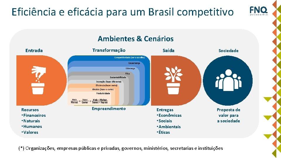 Eficiência e eficácia para um Brasil competitivo Ambientes & Cenários Entrada Transformação Saída Sociedade