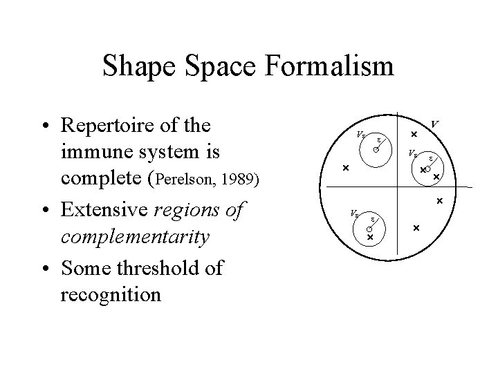 Shape Space Formalism • Repertoire of the immune system is complete (Perelson, 1989) •