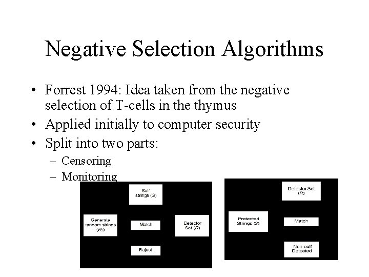 Negative Selection Algorithms • Forrest 1994: Idea taken from the negative selection of T-cells