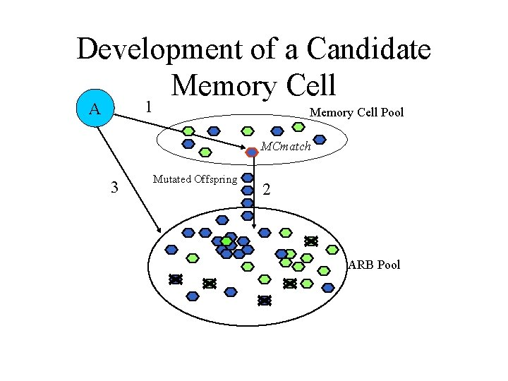 Development of a Candidate Memory Cell 1 A Memory Cell Pool MCmatch 3 Mutated