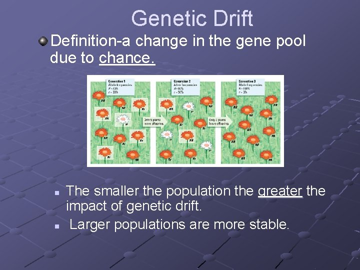 Genetic Drift Definition-a change in the gene pool due to chance. n n The