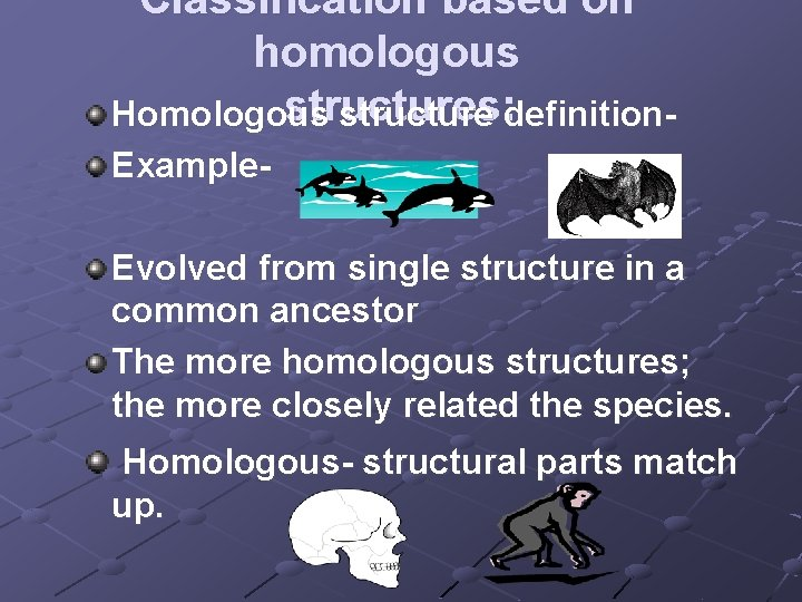 Classification based on homologous structures: Homologous structure definition. Example. Evolved from single structure in