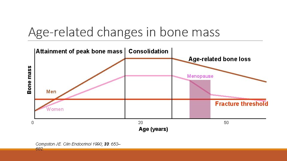 Age-related changes in bone mass Attainment of peak bone mass Consolidation Bone mass Age-related