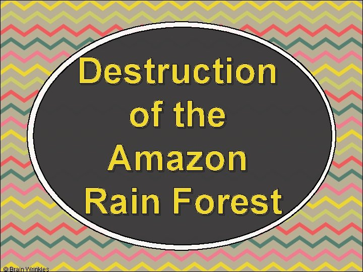 Destruction of the Amazon Rain Forest © Brain Wrinkles