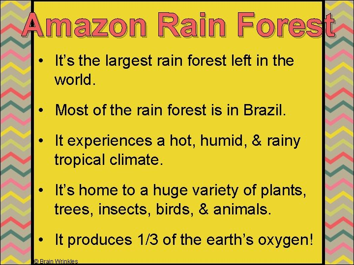 Amazon Rain Forest • It's the largest rain forest left in the world. •