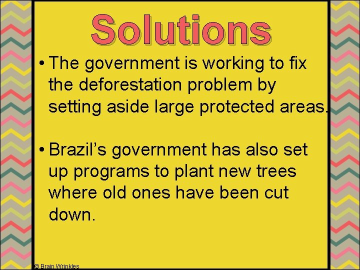 Solutions • The government is working to fix the deforestation problem by setting aside