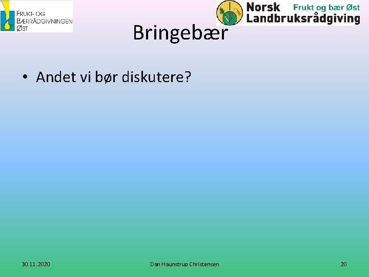 Bringebær • Andet vi bør diskutere? 30. 11. 2020 Dan Haunstrup Christensen 20