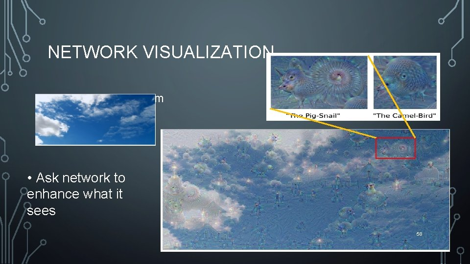 NETWORK VISUALIZATION • Google Deep Dream • Ask network to enhance what it sees