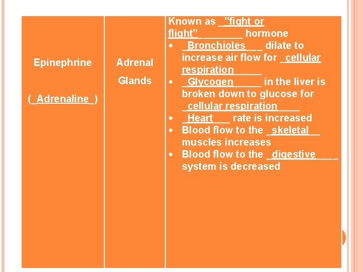 """Epinephrine Adrenal Glands (_Adrenaline_) Known as _""""fight or flight""""____ hormone _Bronchioles___ dilate to"""
