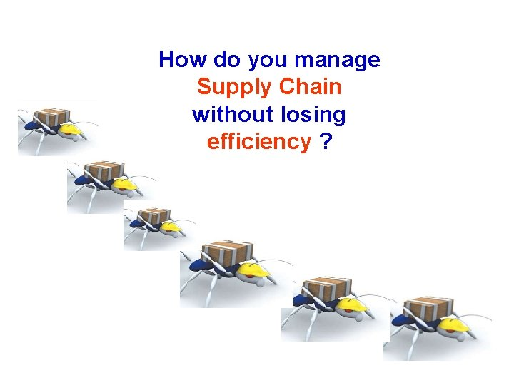 How do you manage Supply Chain without losing efficiency ?