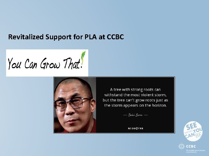 Revitalized Support for PLA at CCBC