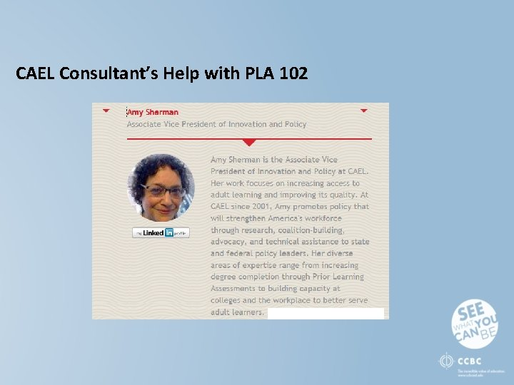 CAEL Consultant's Help with PLA 102