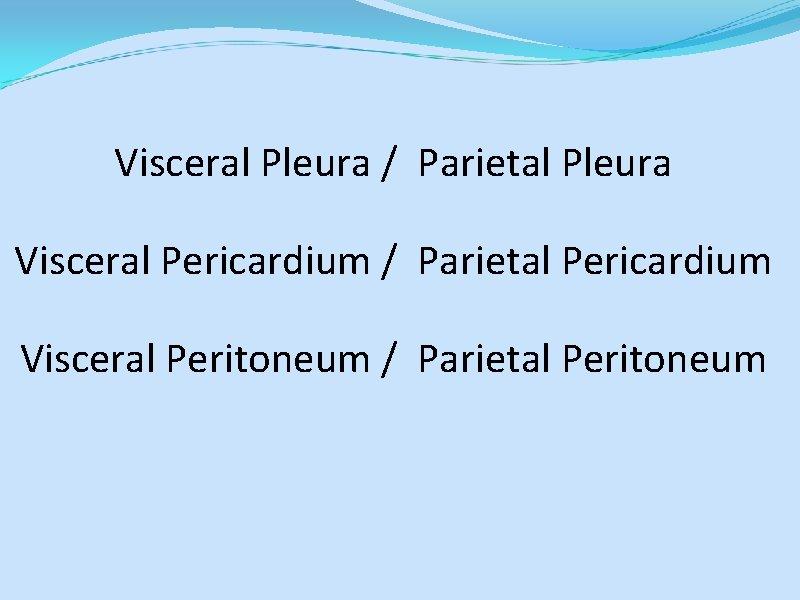 Visceral Pleura / Parietal Pleura Visceral Pericardium / Parietal Pericardium Visceral Peritoneum / Parietal