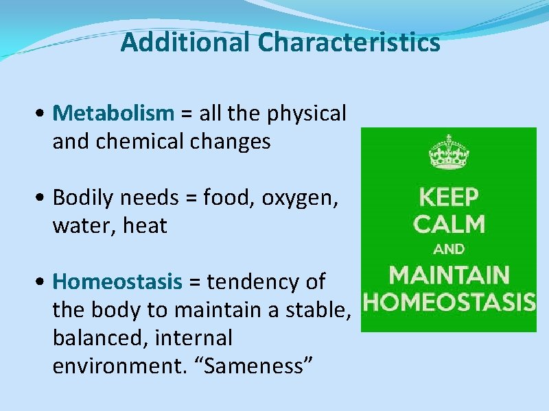 Additional Characteristics • Metabolism = all the physical and chemical changes • Bodily needs