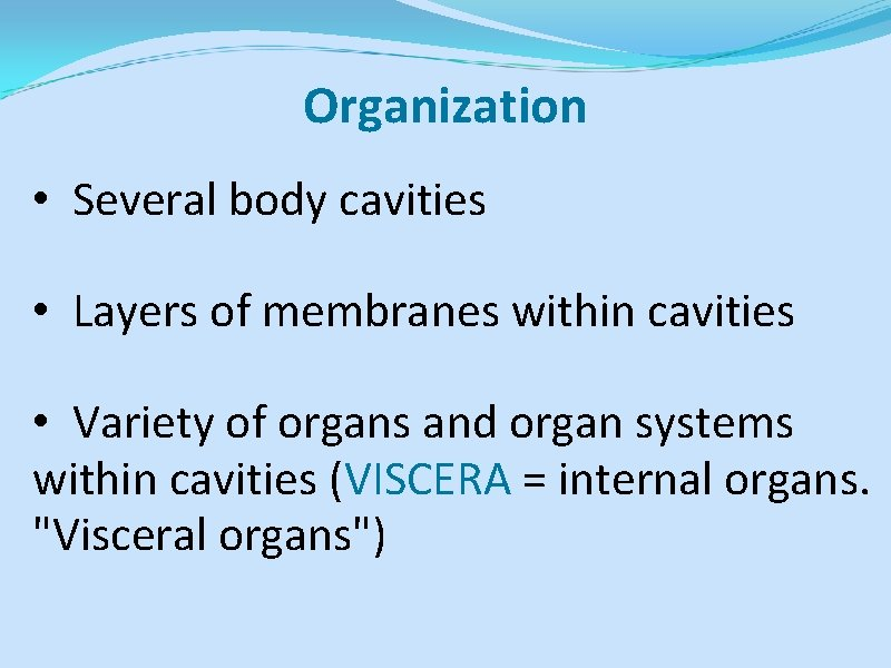 Organization • Several body cavities • Layers of membranes within cavities • Variety of