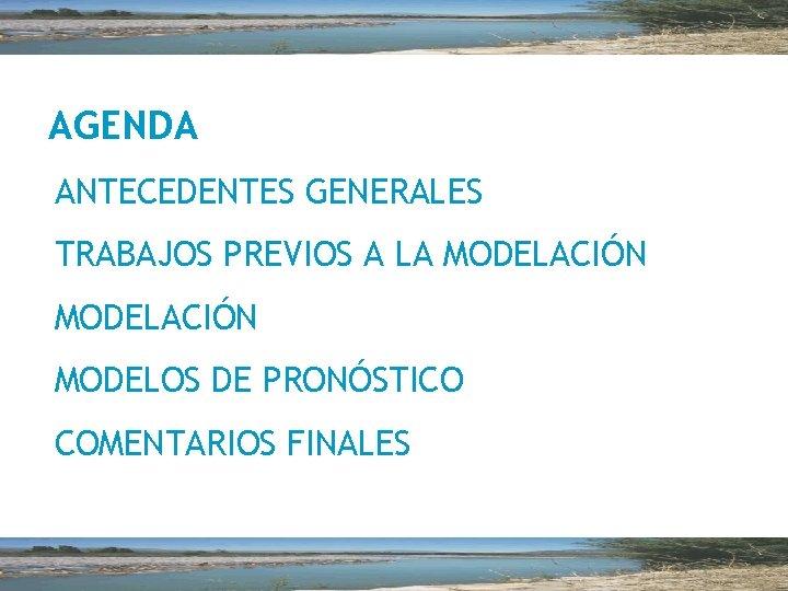 AGENDA ANTECEDENTES GENERALES TRABAJOS PREVIOS A LA MODELACIÓN MODELOS DE PRONÓSTICO COMENTARIOS FINALES