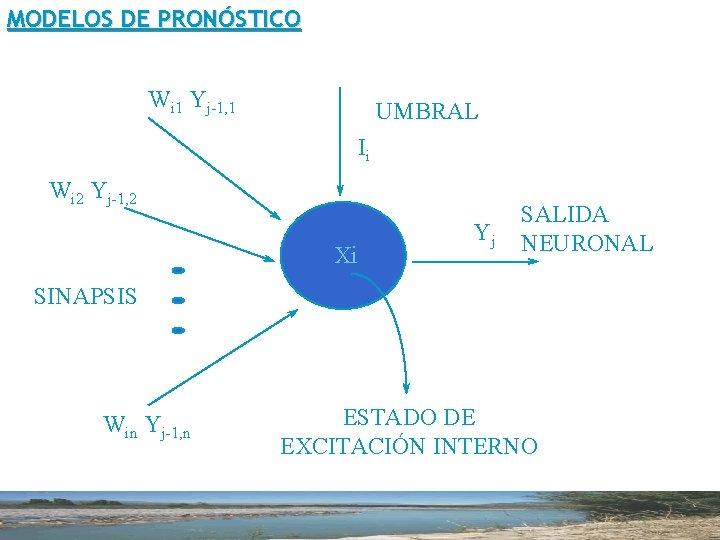 MODELOS DE PRONÓSTICO Wi 1 Yj-1, 1 La Neurona UMBRAL Ii Wi 2 Yj-1,