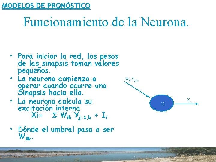 MODELOS DE PRONÓSTICO Funcionamiento de la Neurona. • Para iniciar la red, los pesos