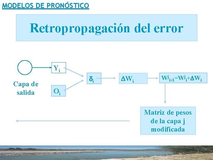 MODELOS DE PRONÓSTICO Retropropagación del error Yi Capa de salida di DWi Wji+1=Wji+DWi Oi