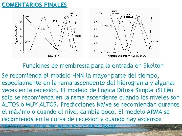 COMENTARIOS FINALES Funciones de membresía para la entrada en Skelton Se recomienda el modelo