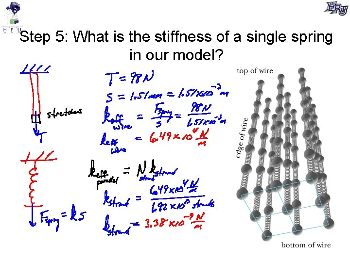 Step 5: What is the stiffness of a single spring in our model?