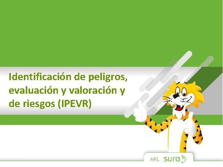 Identificación de peligros, evaluación y valoración y de riesgos (IPEVR)