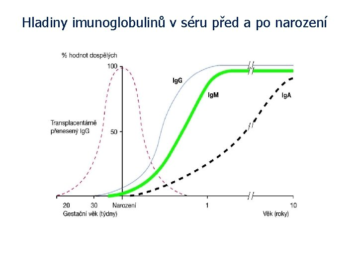 Hladiny imunoglobulinů v séru před a po narození