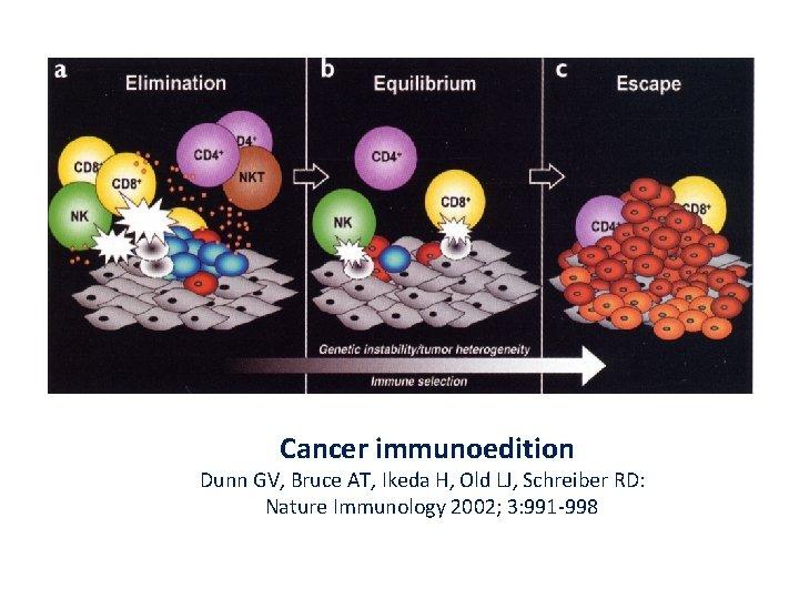 Cancer immunoedition Dunn GV, Bruce AT, Ikeda H, Old LJ, Schreiber RD: Nature Immunology